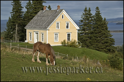 farmhouse,Cape Breton